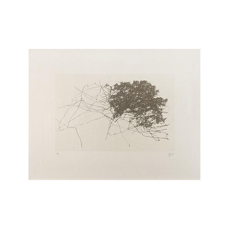 HOLLAN Alexandre - Mouvement d'énergie dans l'arbre 1
